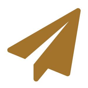 icon_avion